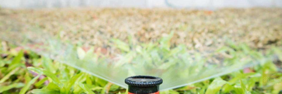 $65 Spring Sprinkler Startup