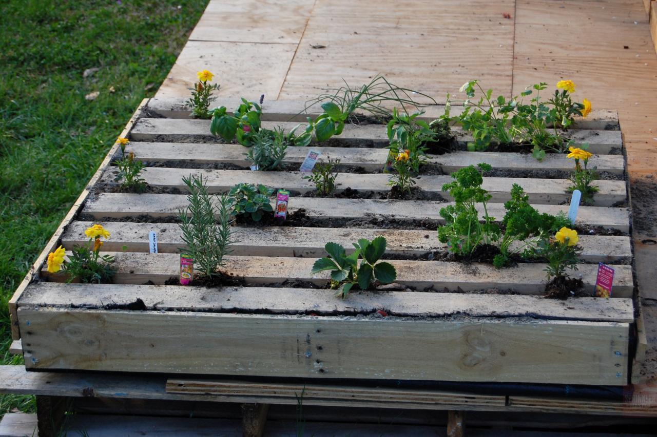 Wooden pallet herb garden sprinkler master sprinkler master for Wood pallet herb garden
