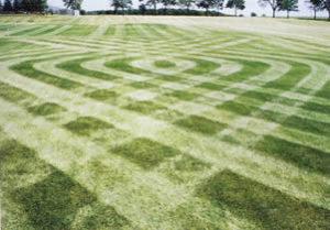 lawn patterns